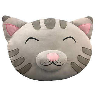 Big Bang Theory Soft Kitty Kopfkissen